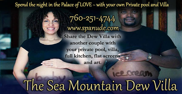 The Sea Mountain Dew Villa - Spend the night in the Palace of Love 760-251-4744