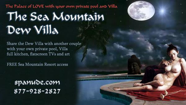 Sea Mountain Dew Villa 760-251-4744