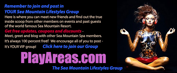 Your Sea Mountain Lifestyles Group - playareas.com